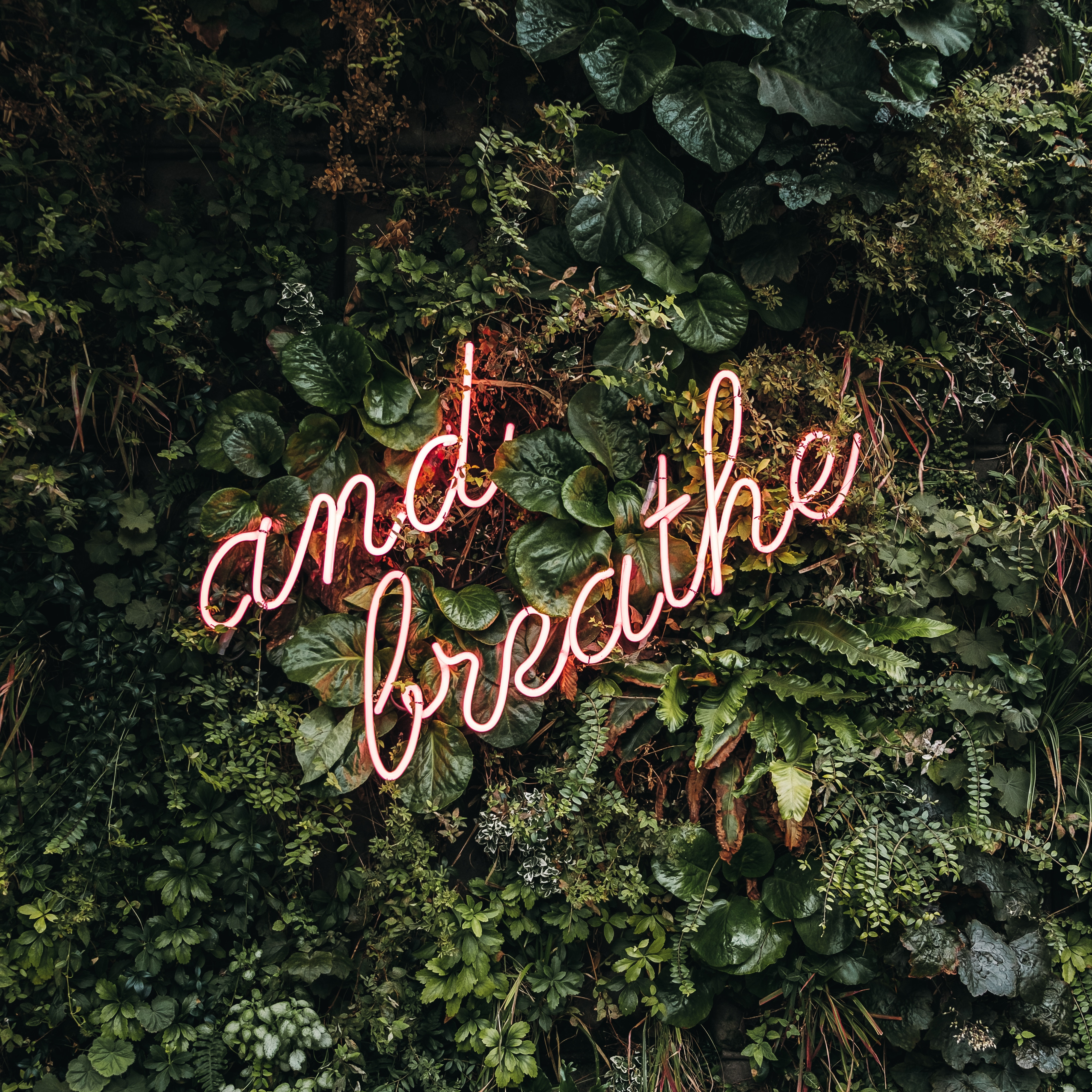 How To Breathe Instead Of Eat When You Feel Anxious